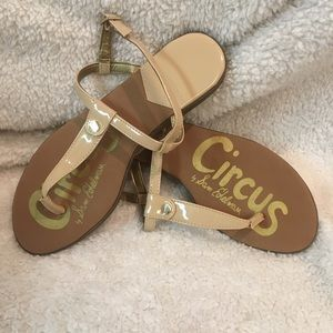 Circus by Sam Edelman size 7.5 shoes.